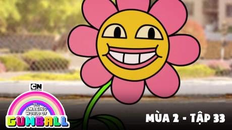 Gumball S2 - Tập 33: Anh bạn đầu hộp