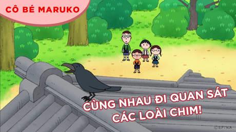 Cô bé Maruko - Tập 28: Cùng nhau đi quan sát các loài chim!