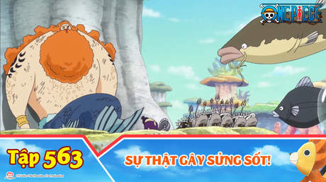 One Piece S15 - Tập 563: Sự thật gây sửng sốt!