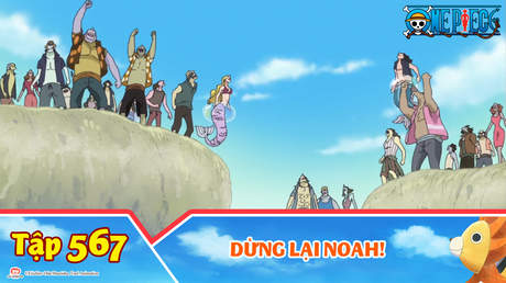 One Piece S15 - Tập 567: Dừng lại Noah!