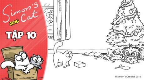 Simon's cat 2016 - Tập 10: Little box